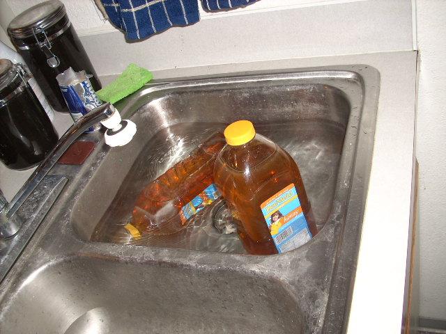 Warm Honey